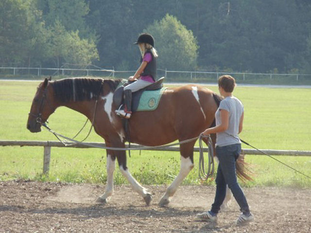 Horse workshops for children in Bled