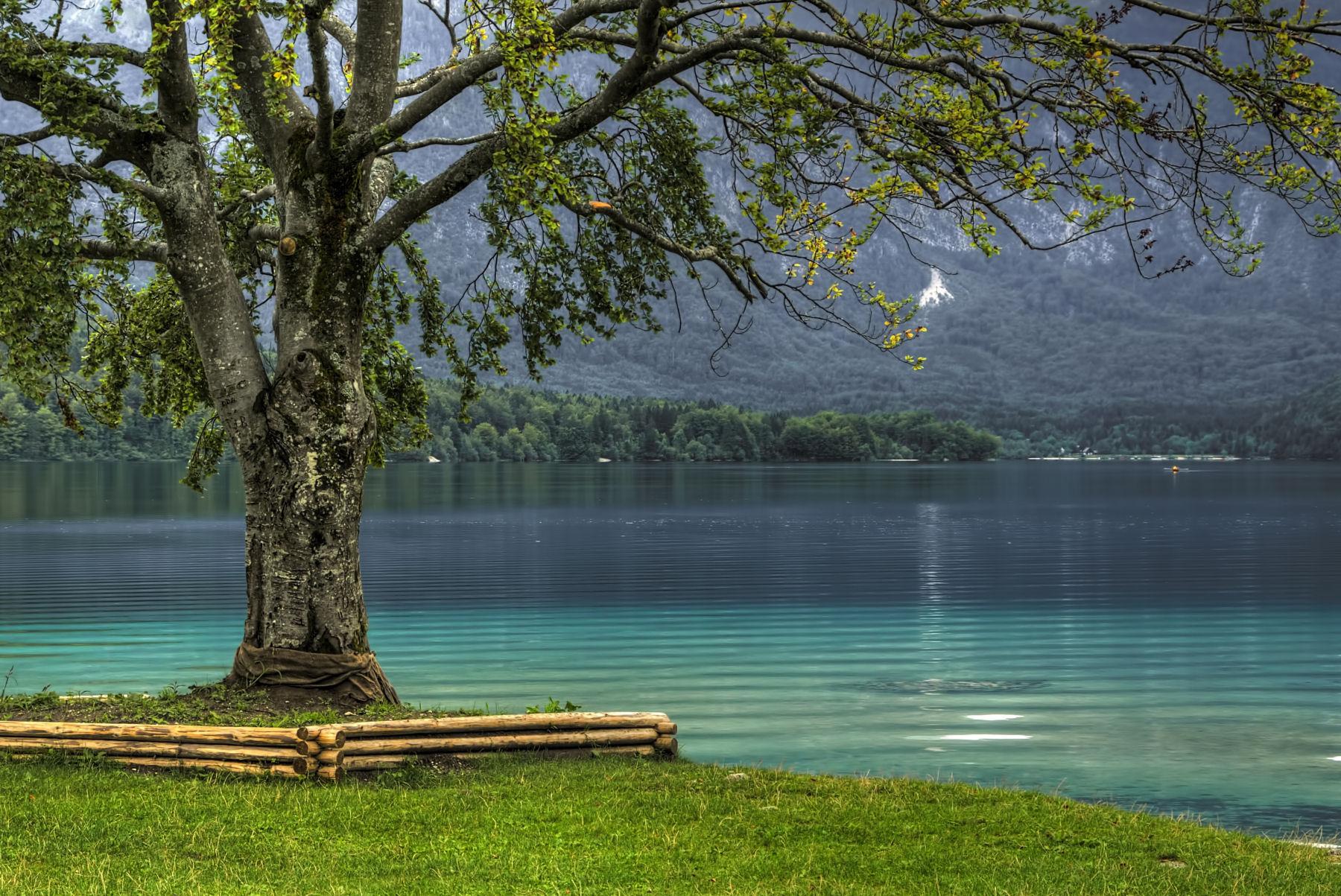 lake-bohinj-slovenia