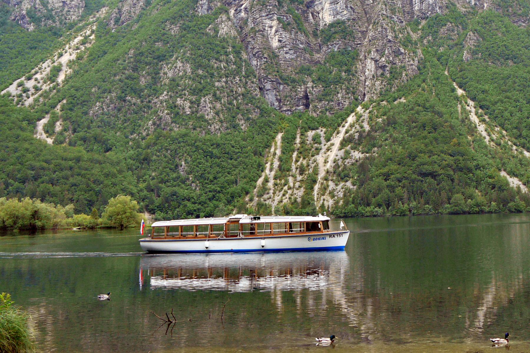lake-bohinj-tourist-boat-ducks