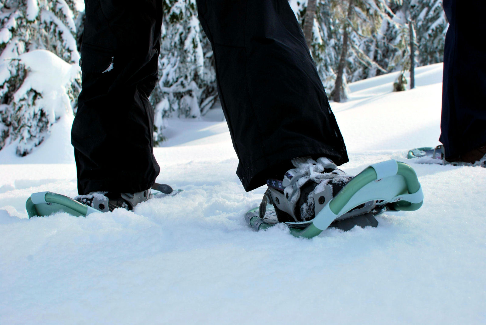 modern-snowshoes