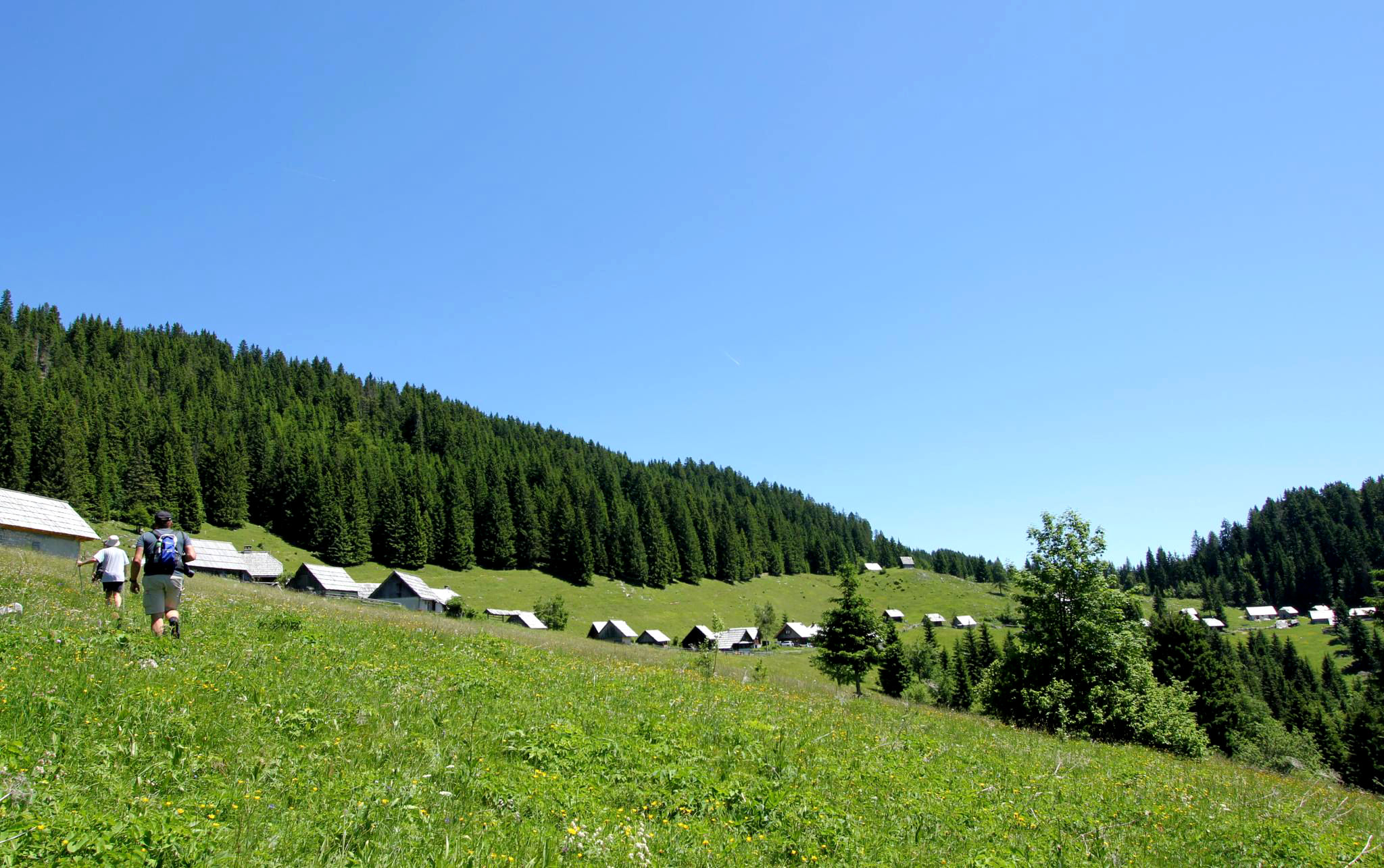 Traditional Slovenian shepherds' huts of the Pokljuka region in the Julian Alps, Slovenia