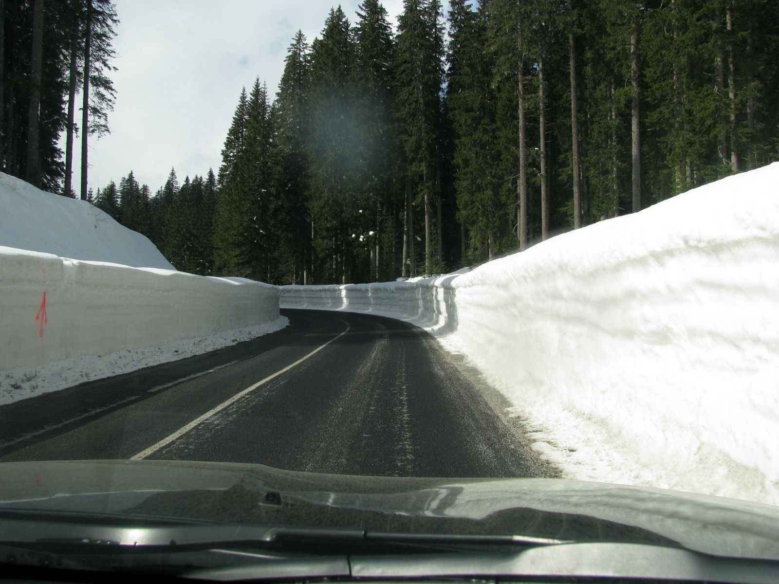 Plowed road to Pokljuka in the winter season