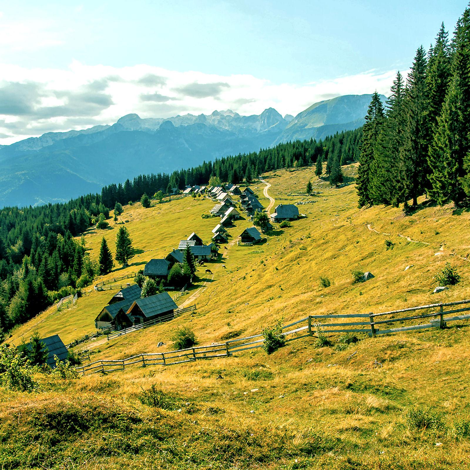 Pokljuka plateau, Slovenia