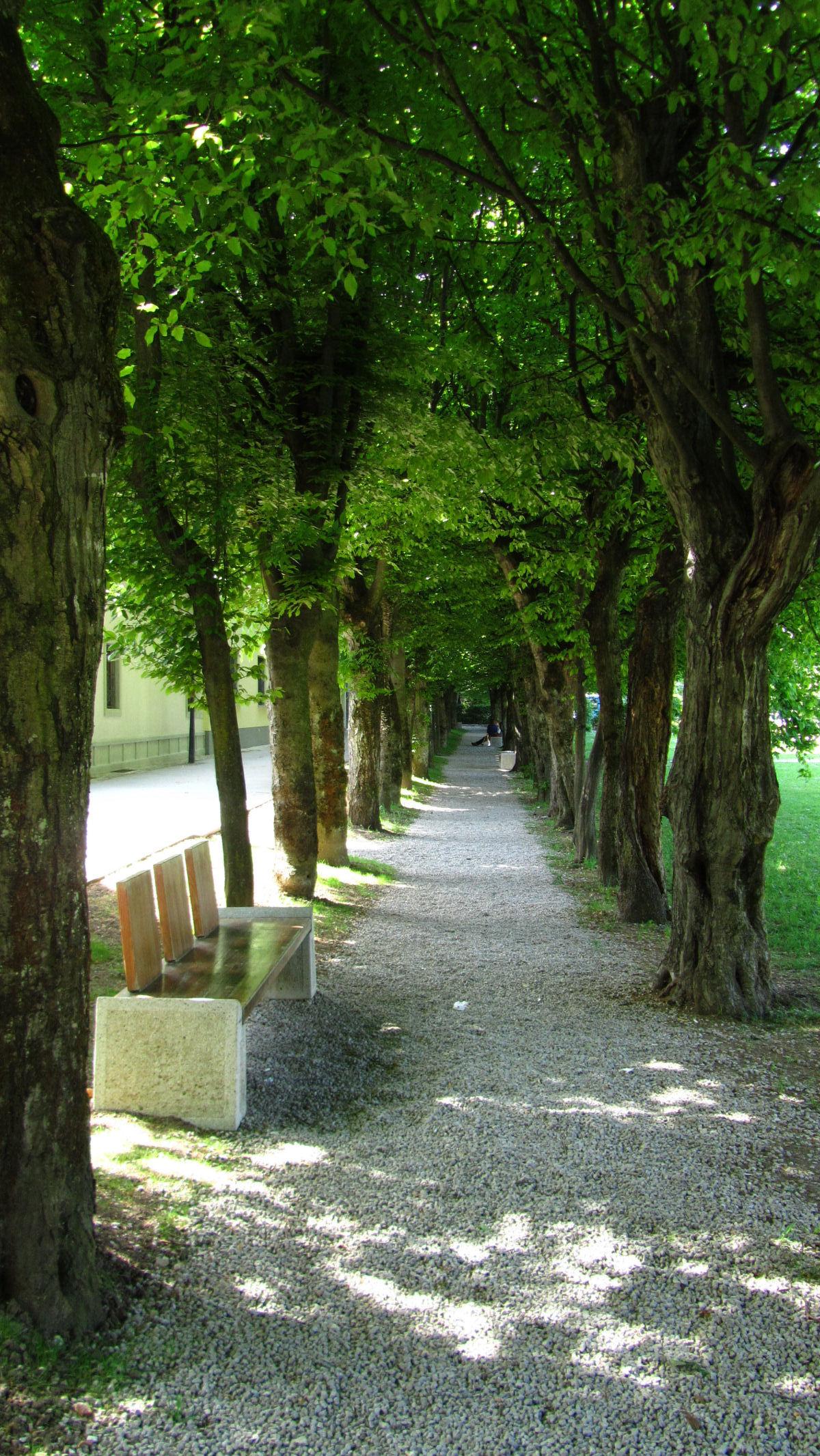 radovljica-medieval-old-town-8473