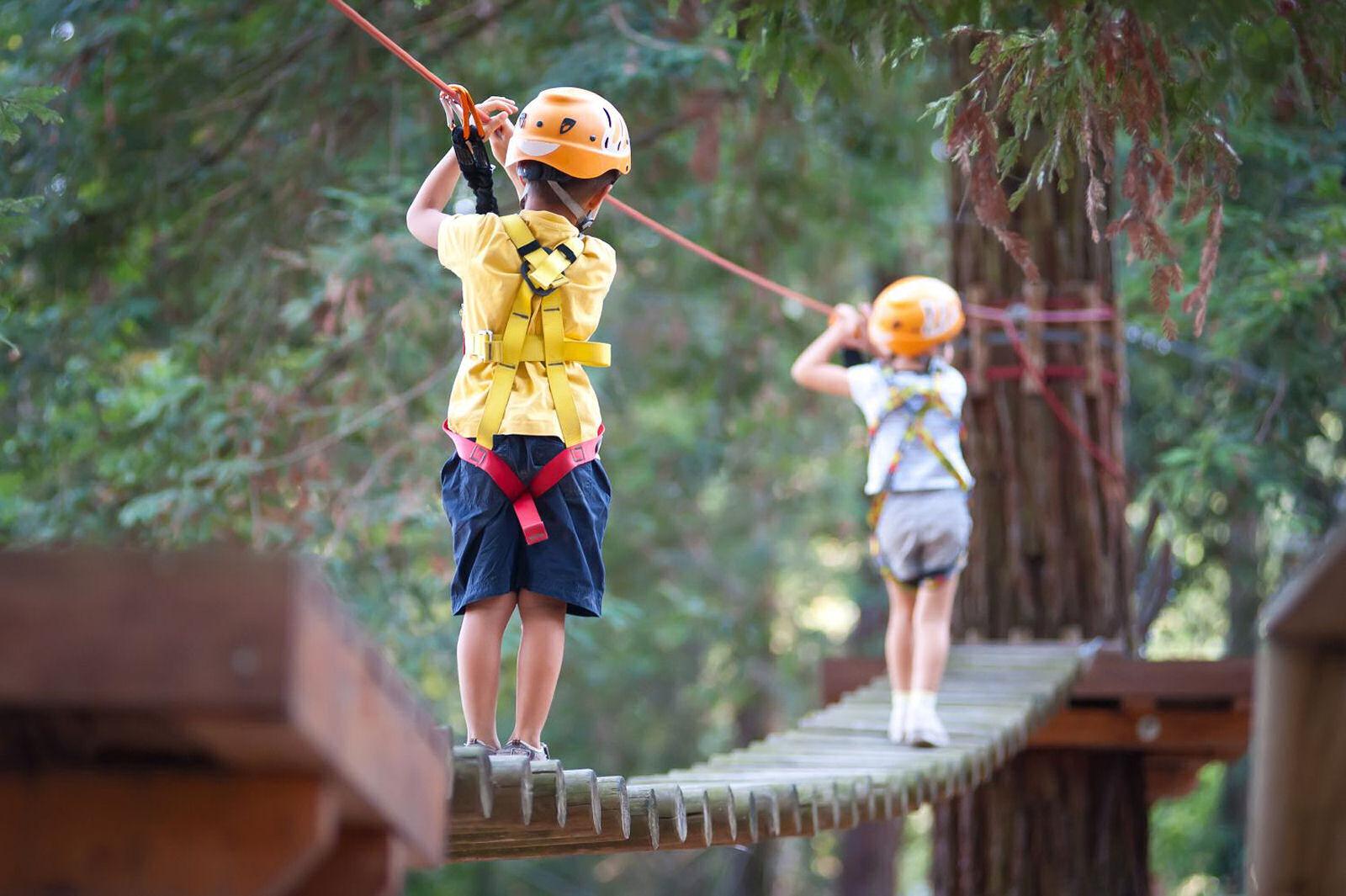 summer-park-krvavec-adventure-park