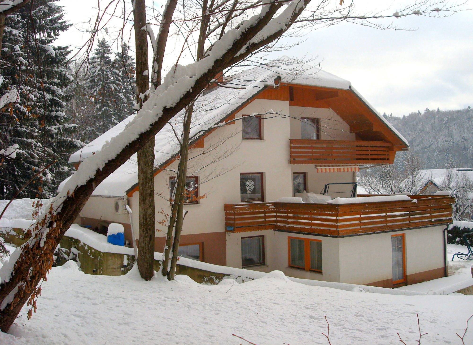 The best apartment in winter in Slovenia
