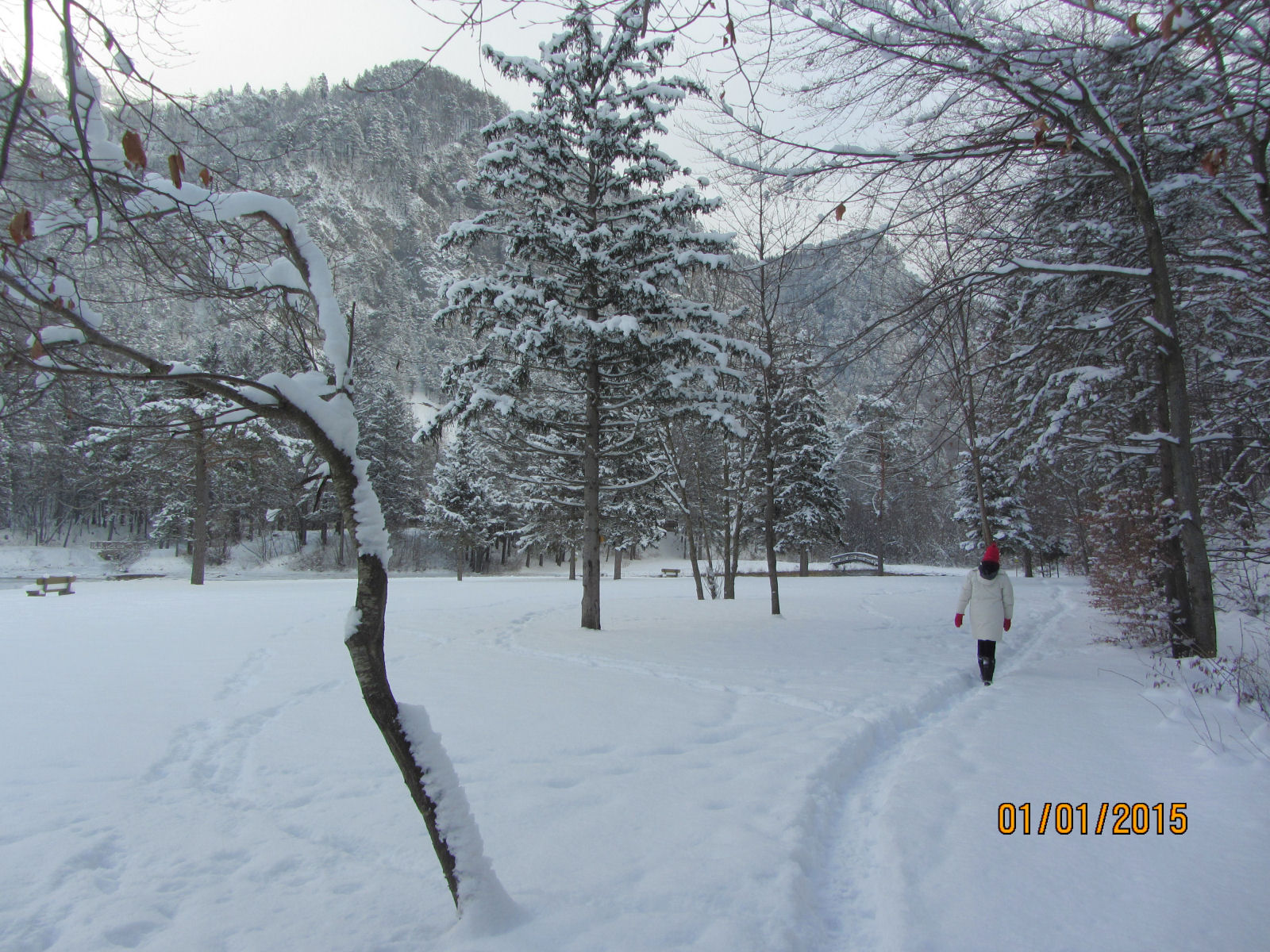 All is white in the Gorenjska region of Slovenia