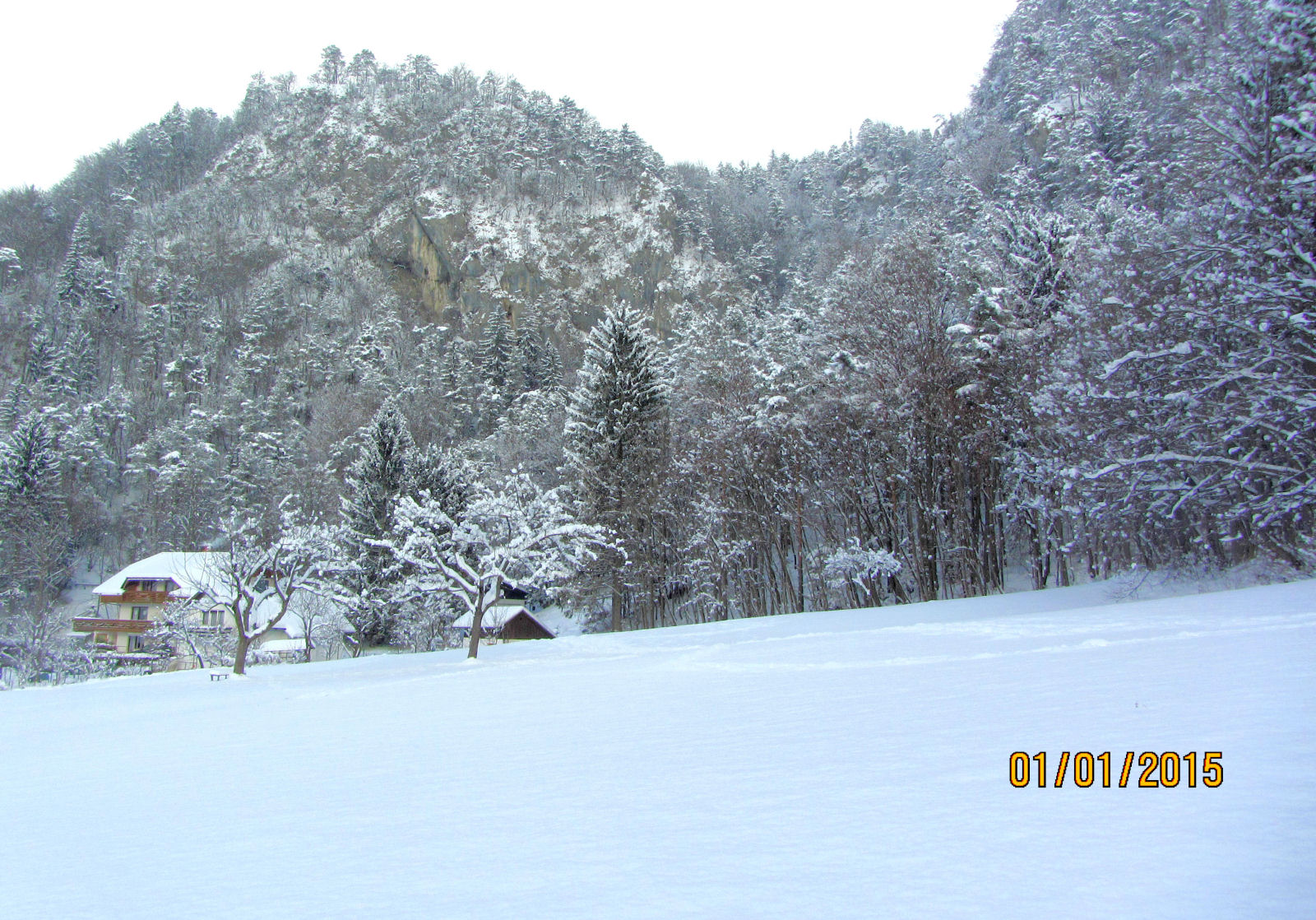 Apartment near Bled in winter with a beautiful nature all around