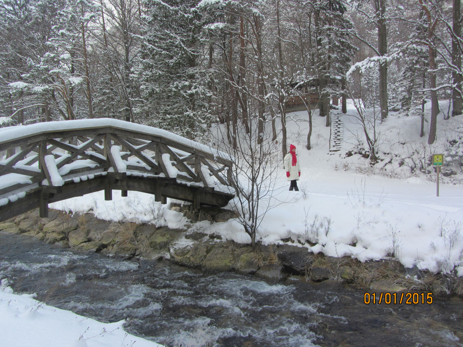 Bridge across the Zavrsnica stream in winter
