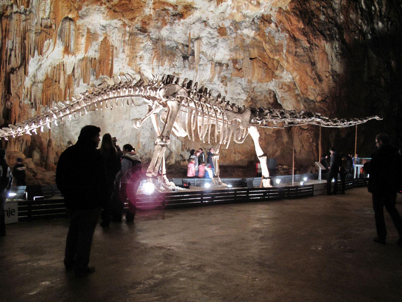 chinese-dinosaur-postojna-cave-slovenia