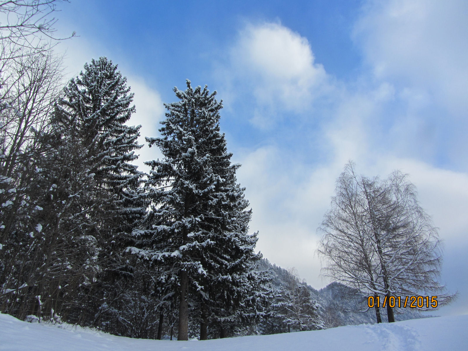 Snow covered landscape of Upper Carniola, Slovenia