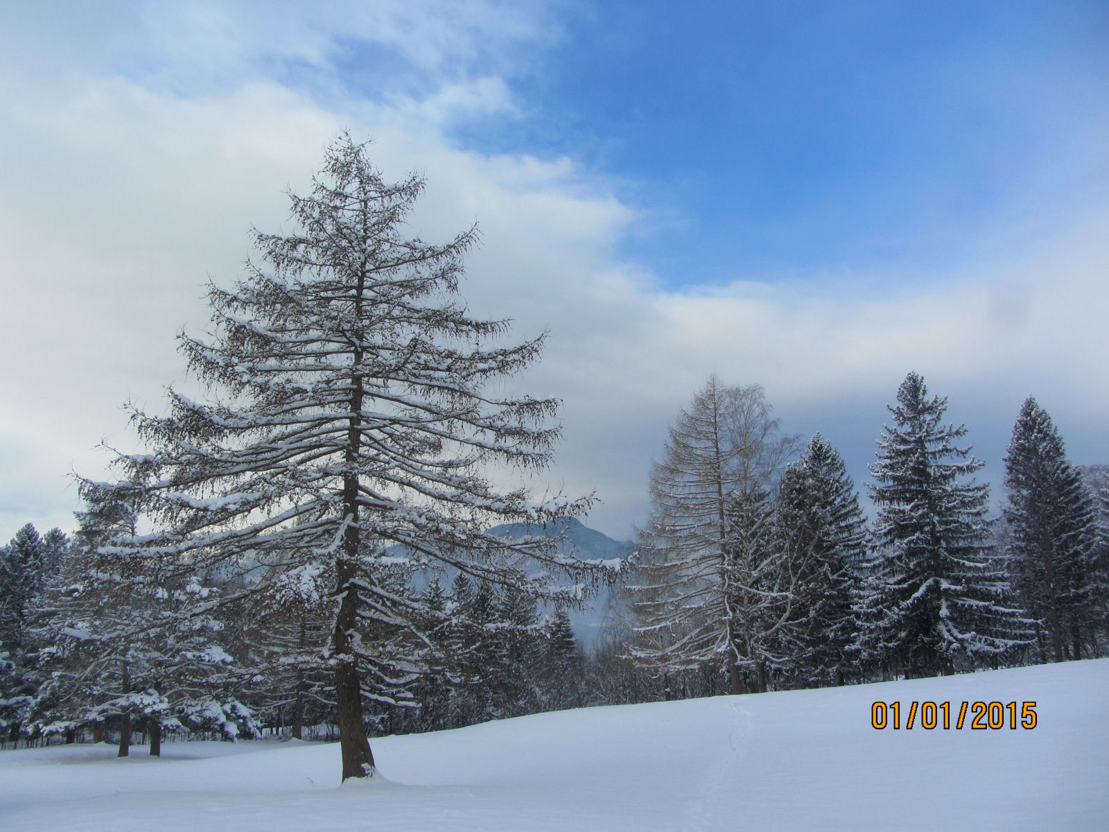 Snow in winter in Gorenjska in Slovenia