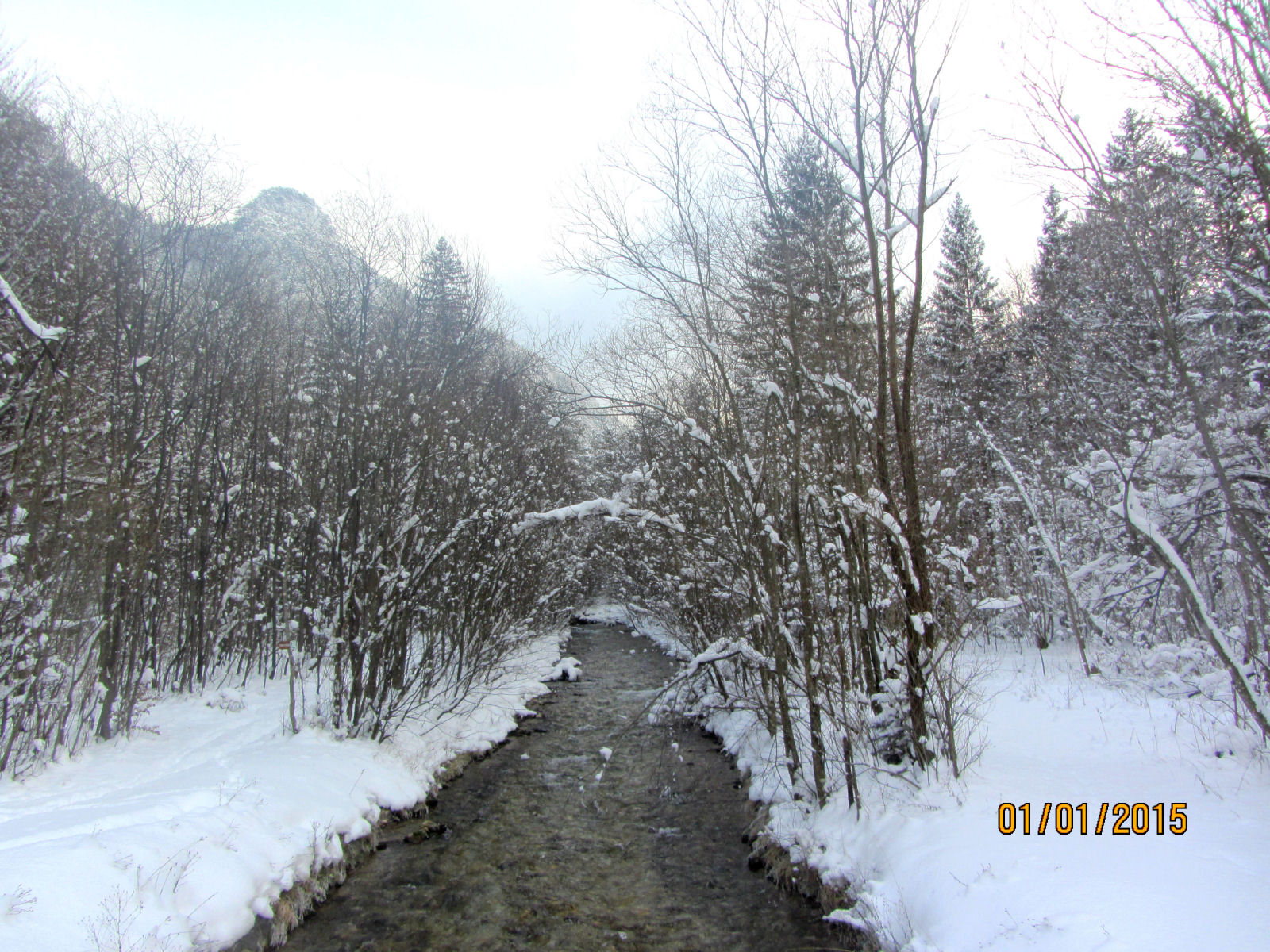 The Zavrsnica stream in winter