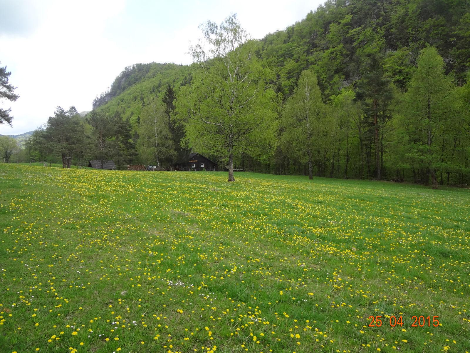 spring-slovenia-12