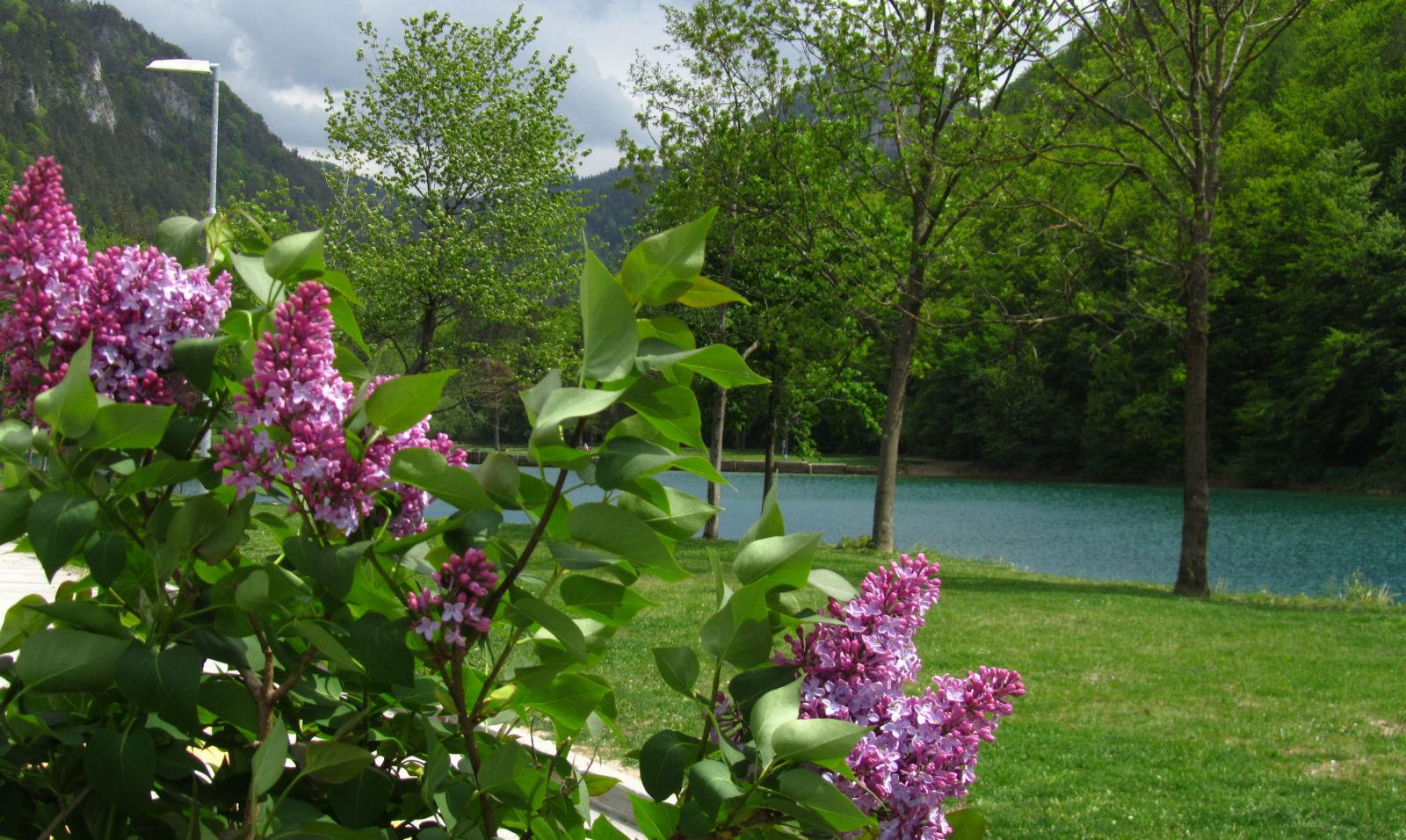 spring-slovenia-19