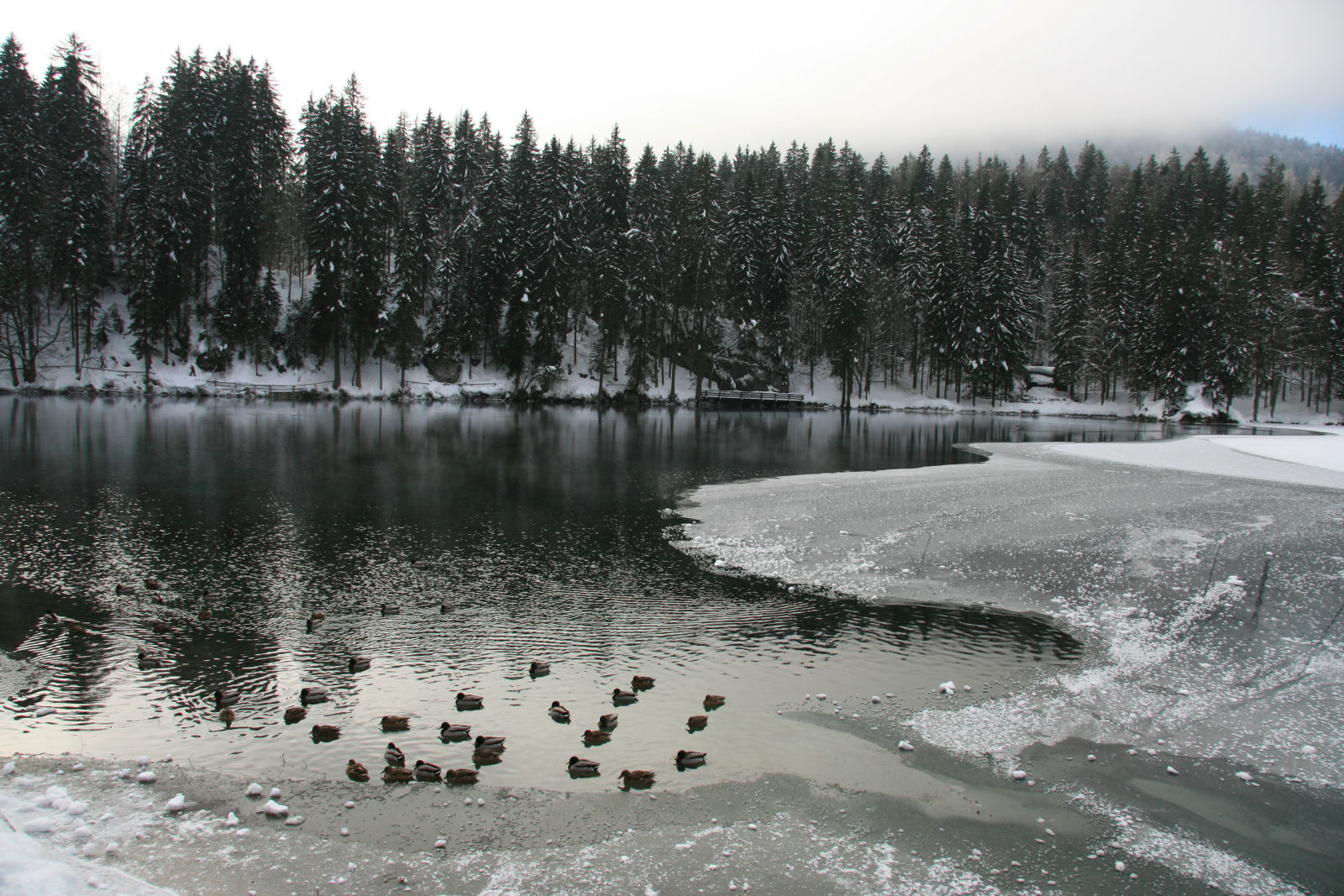 Laghi di Fusine Lakes in winter