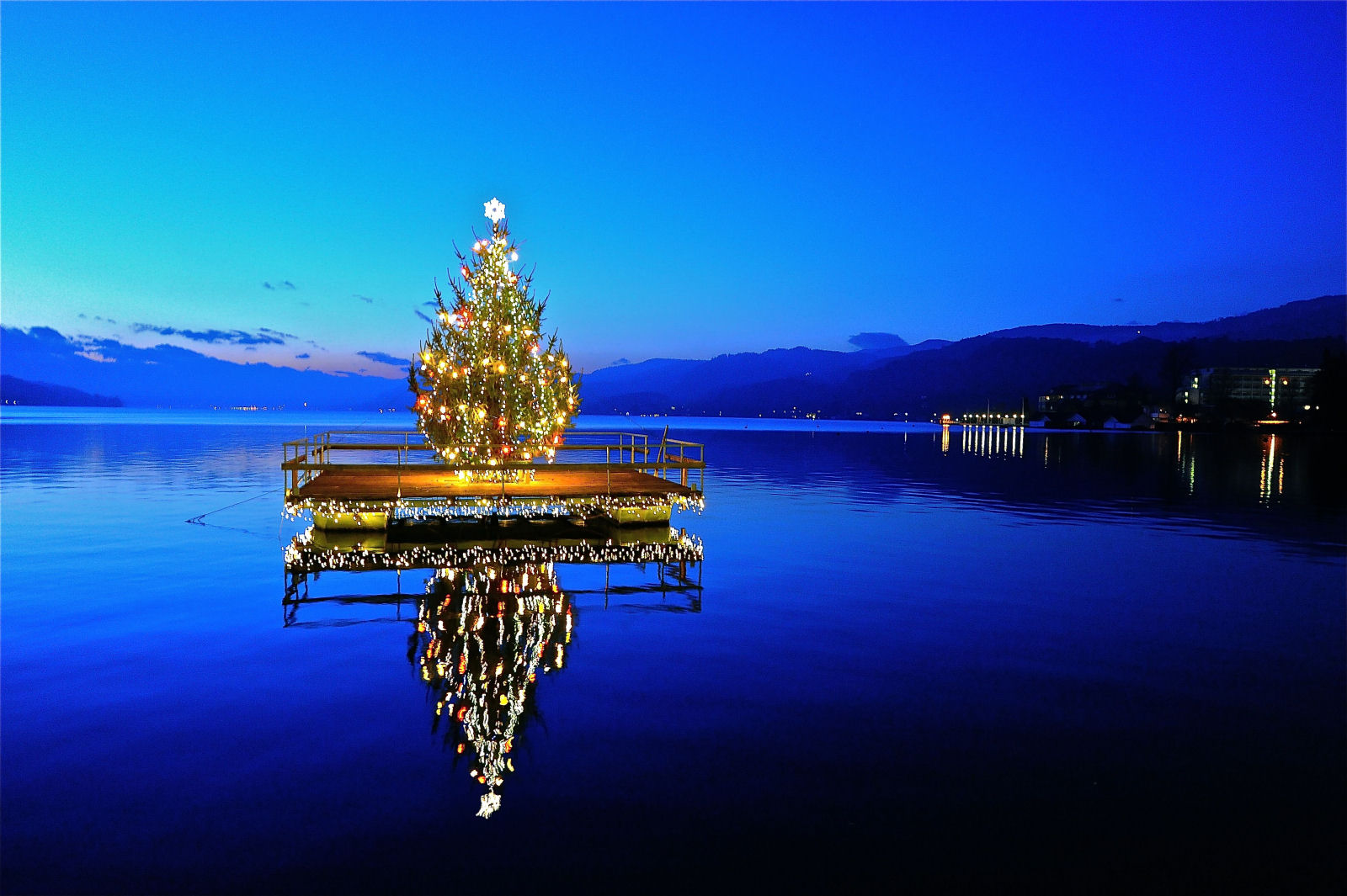 lake-woerthersee-christmas-tree-austria