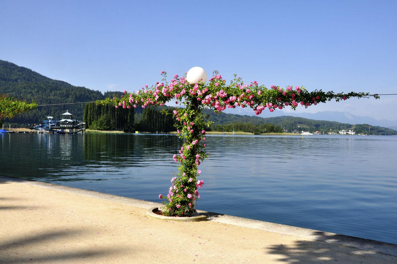 lake-woerthersee-roses-promenade-austria