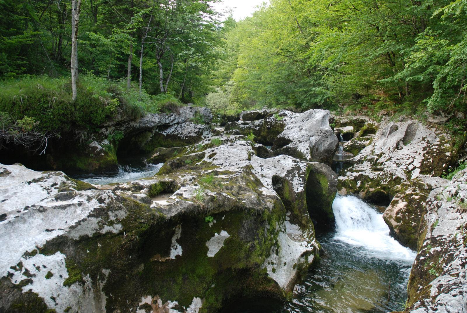 Mostnica stream, Slovenia