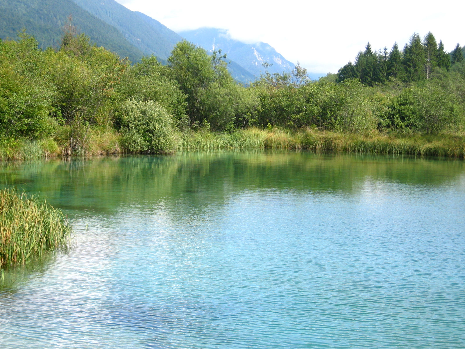 zelenci-nature-reserve-02-lake