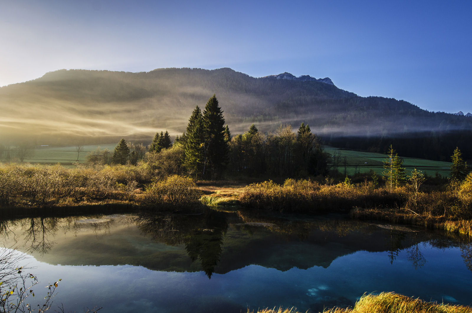 zelenci-nature-reserve-morning