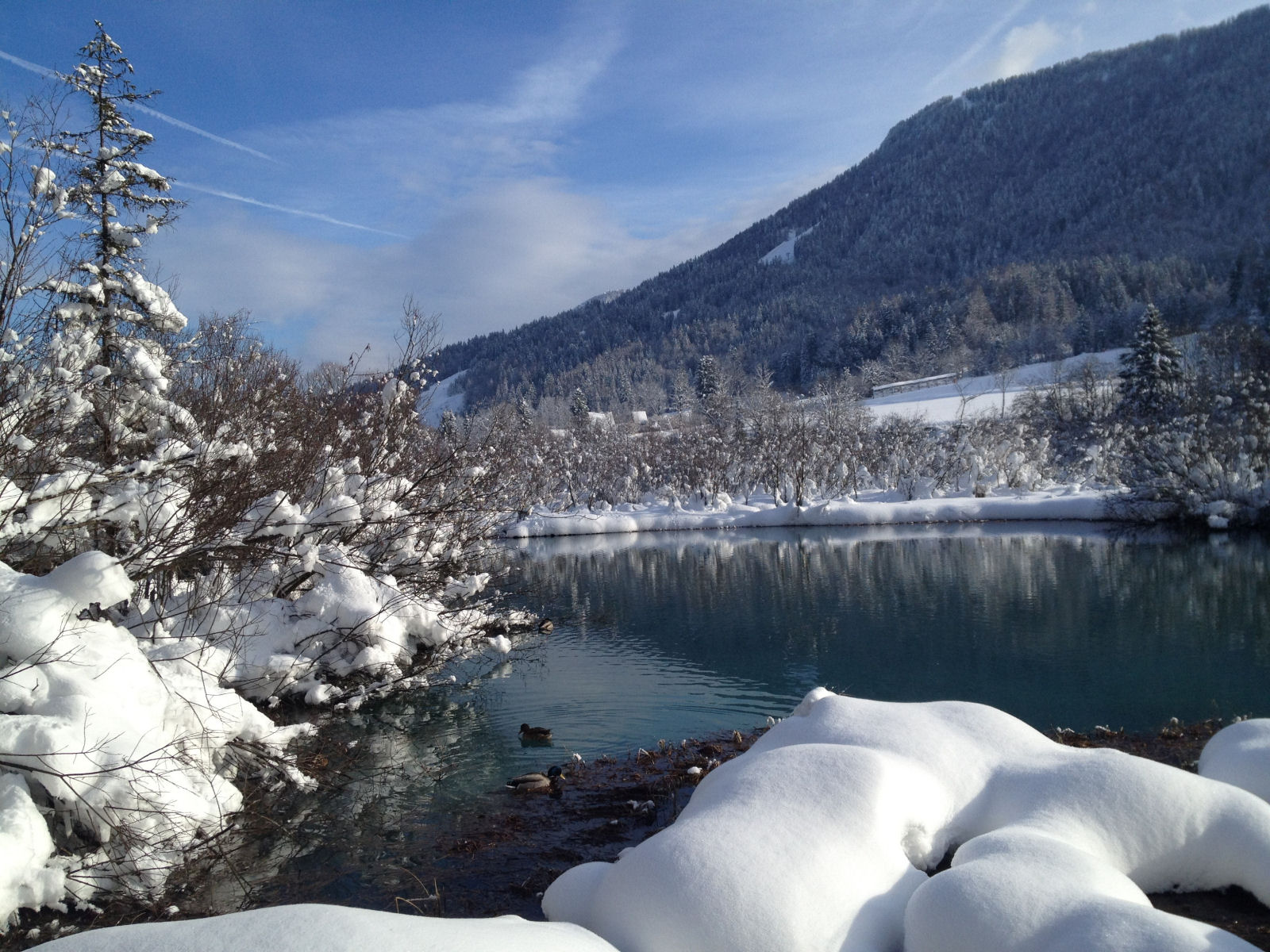 zelenci-nature-reserve-winter