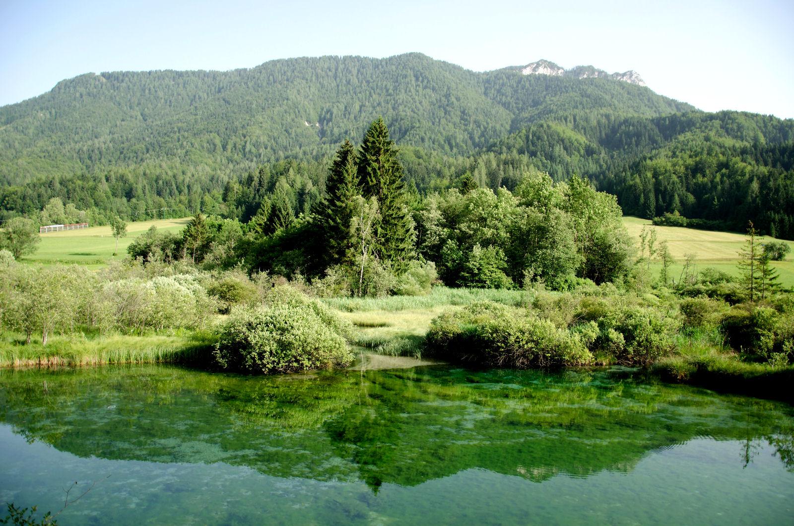 zelenci-sava-dolinka-river