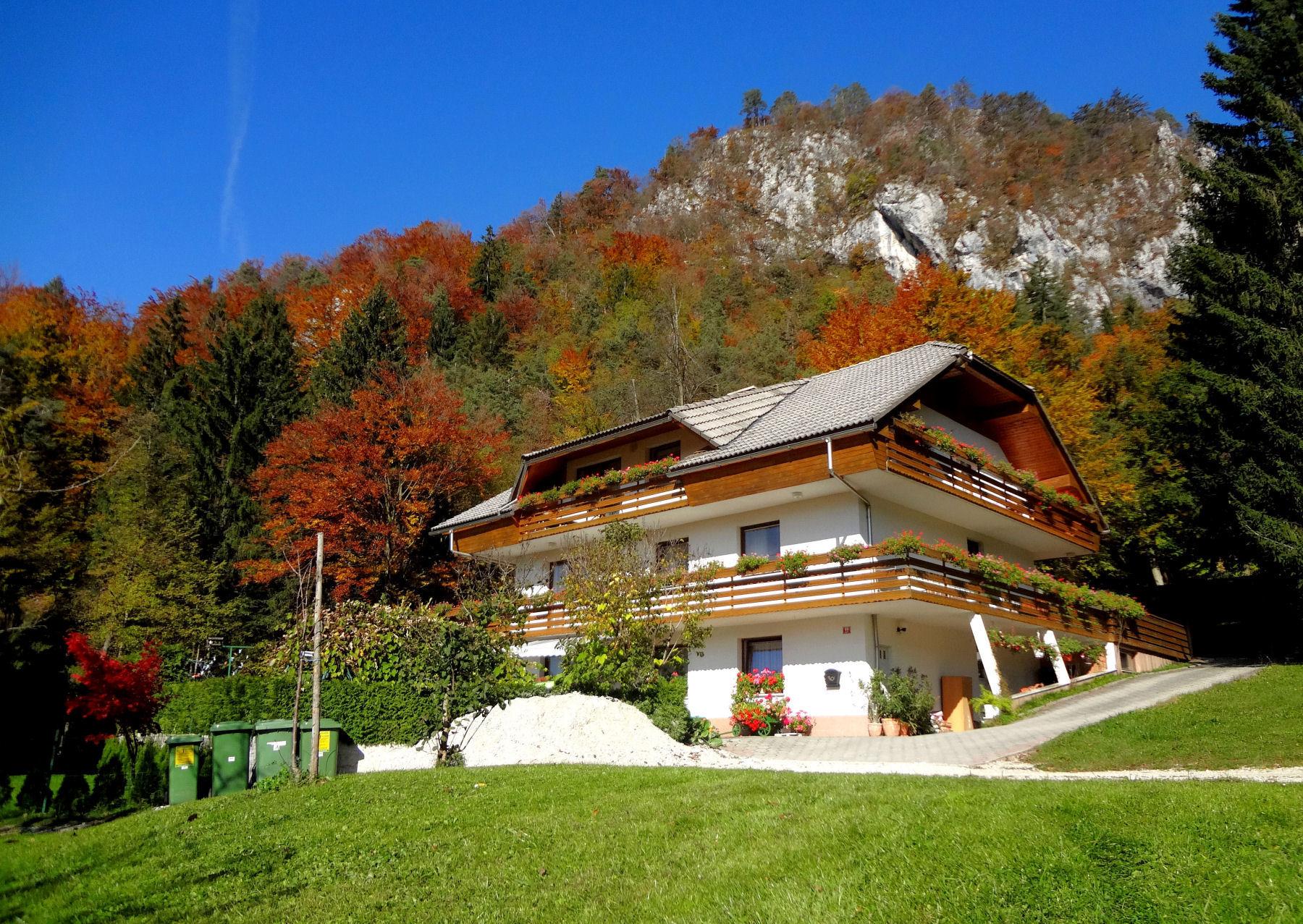 autumn-nature-slovenia-001