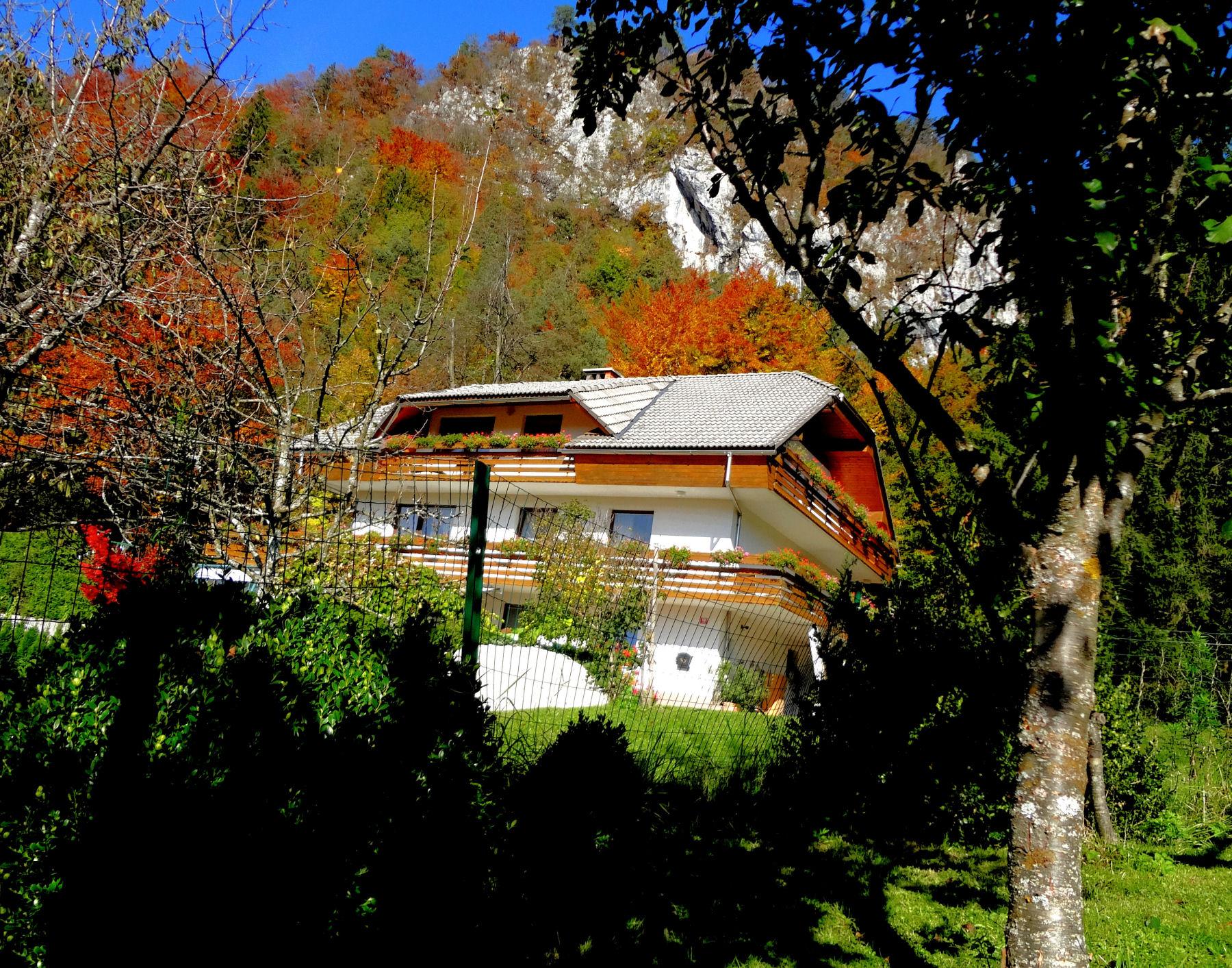 autumn-nature-slovenia-011