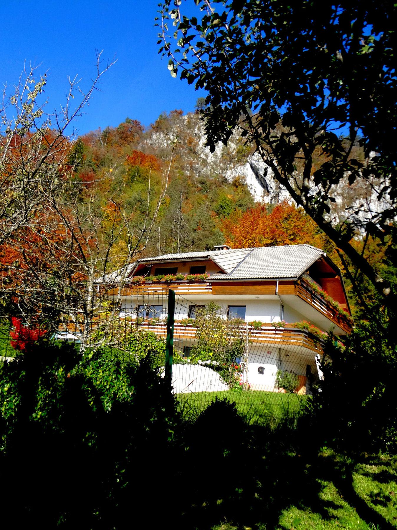 autumn-nature-slovenia-013