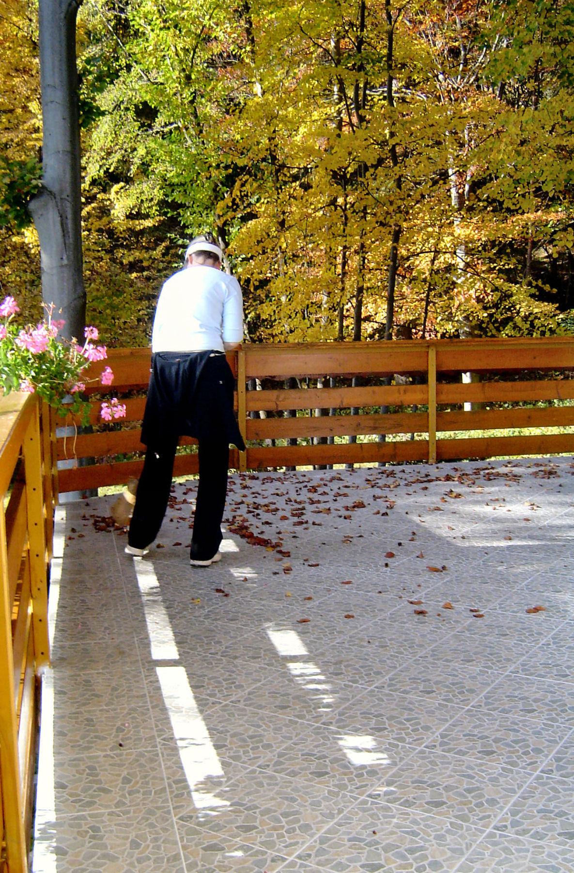 autumn-nature-slovenia-018