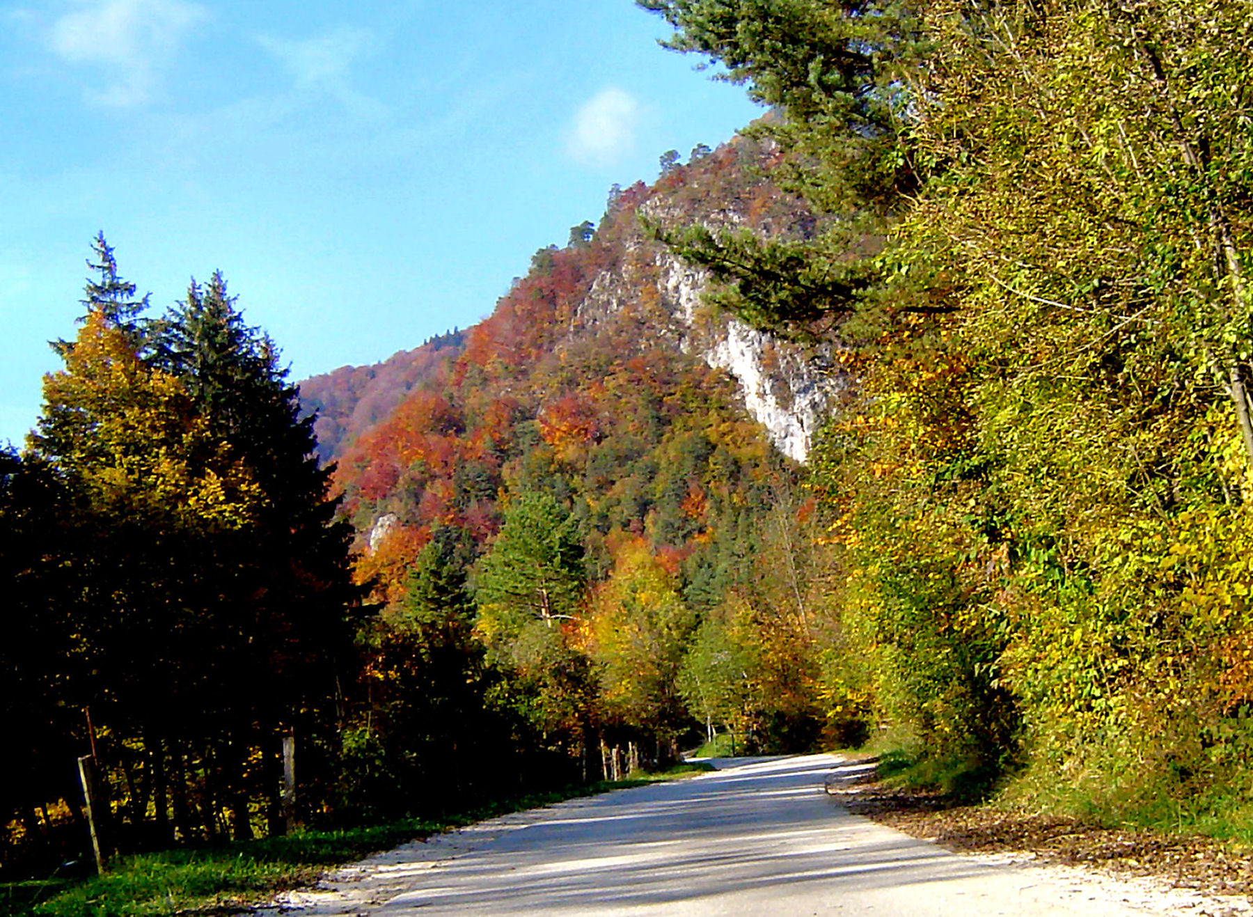 autumn-nature-slovenia-038