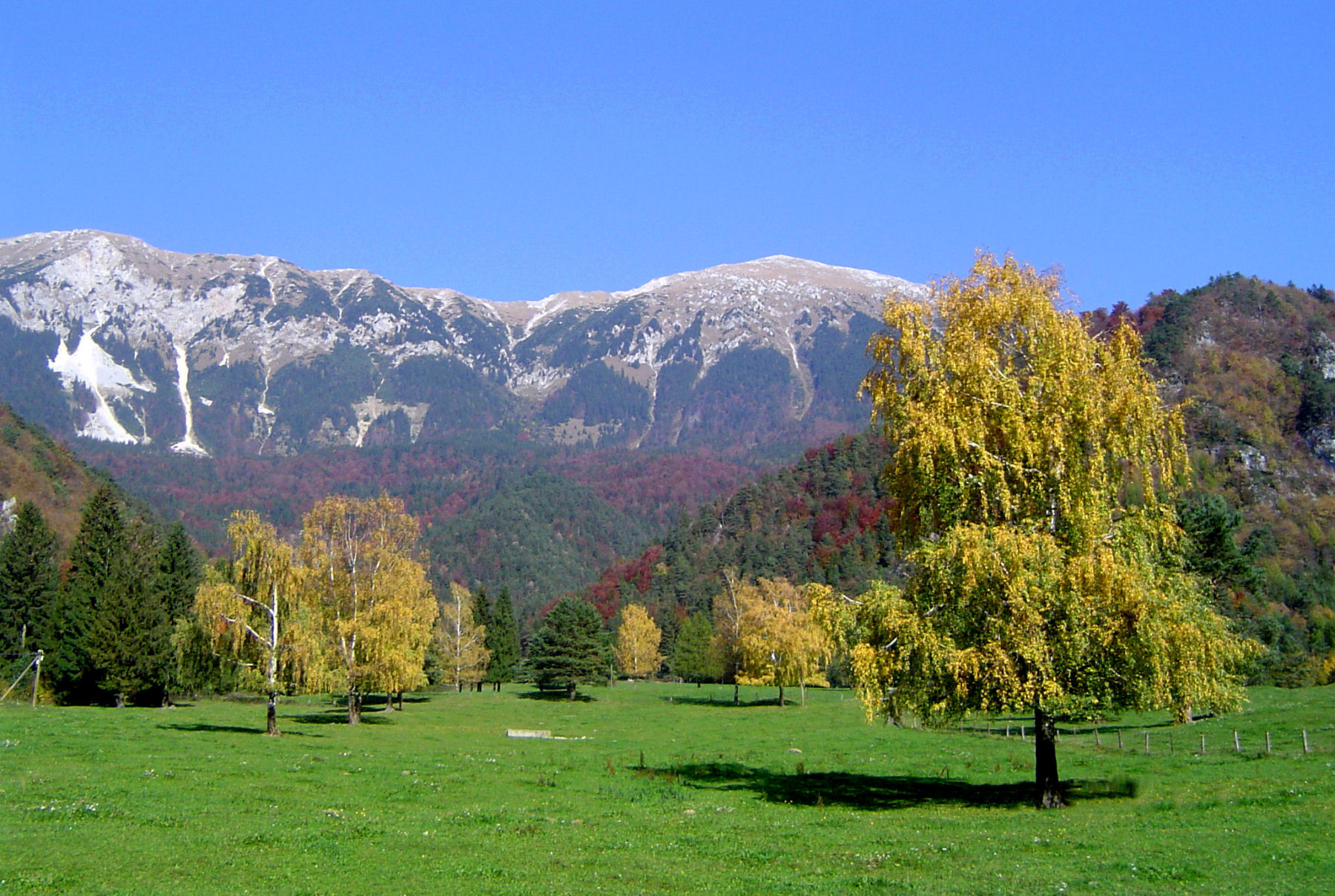 autumn-nature-slovenia-065