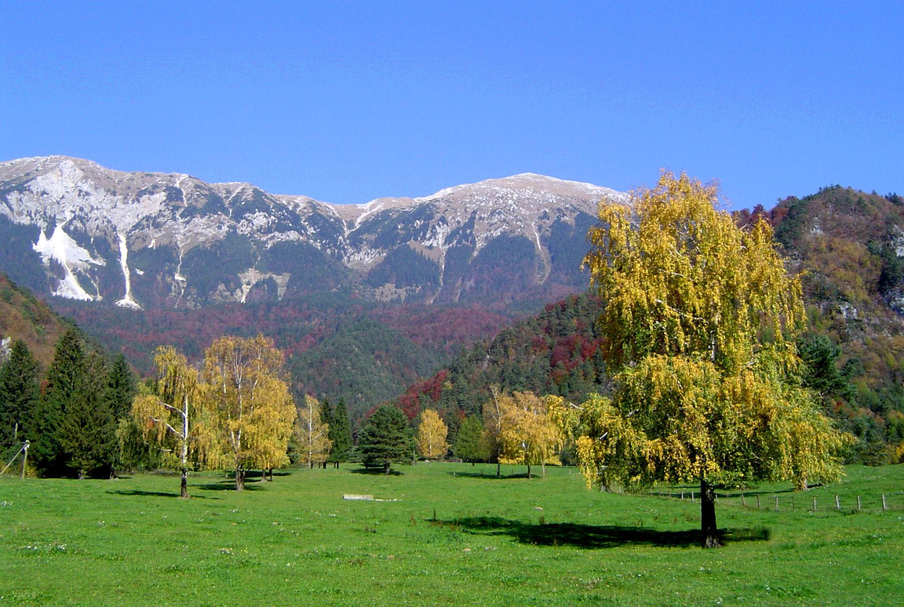 autumn-nature-slovenia-065