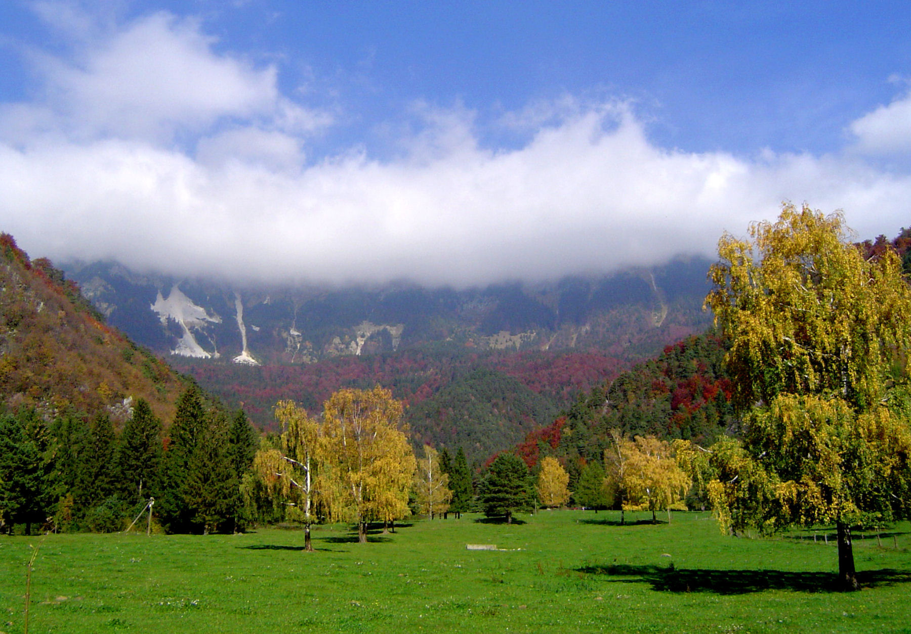 autumn-nature-slovenia-066