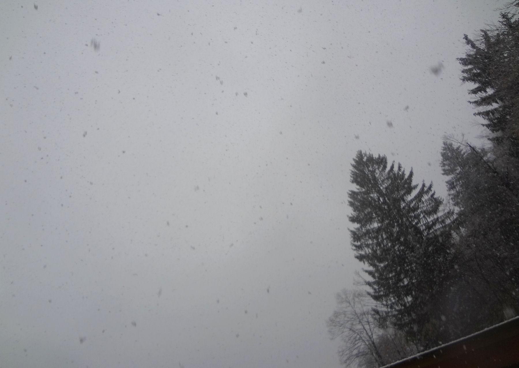 first-snow-november-2015-4