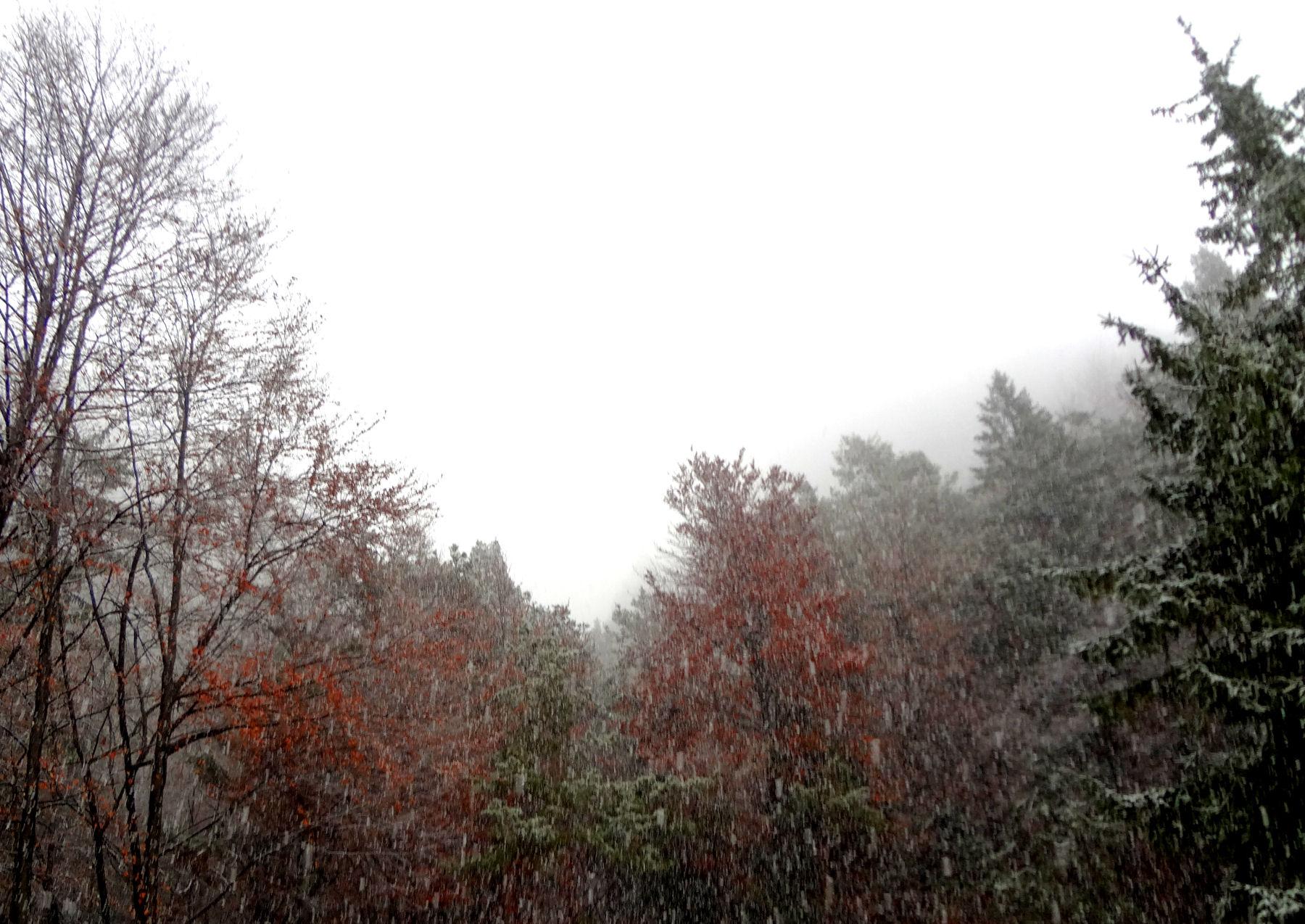first-snow-november-2015