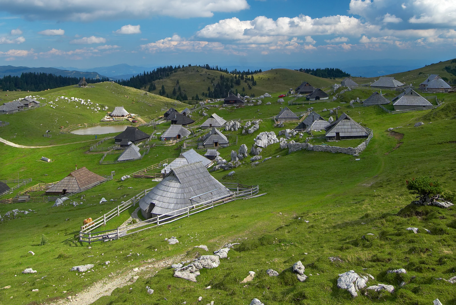 velika-planina-mountain-pasture