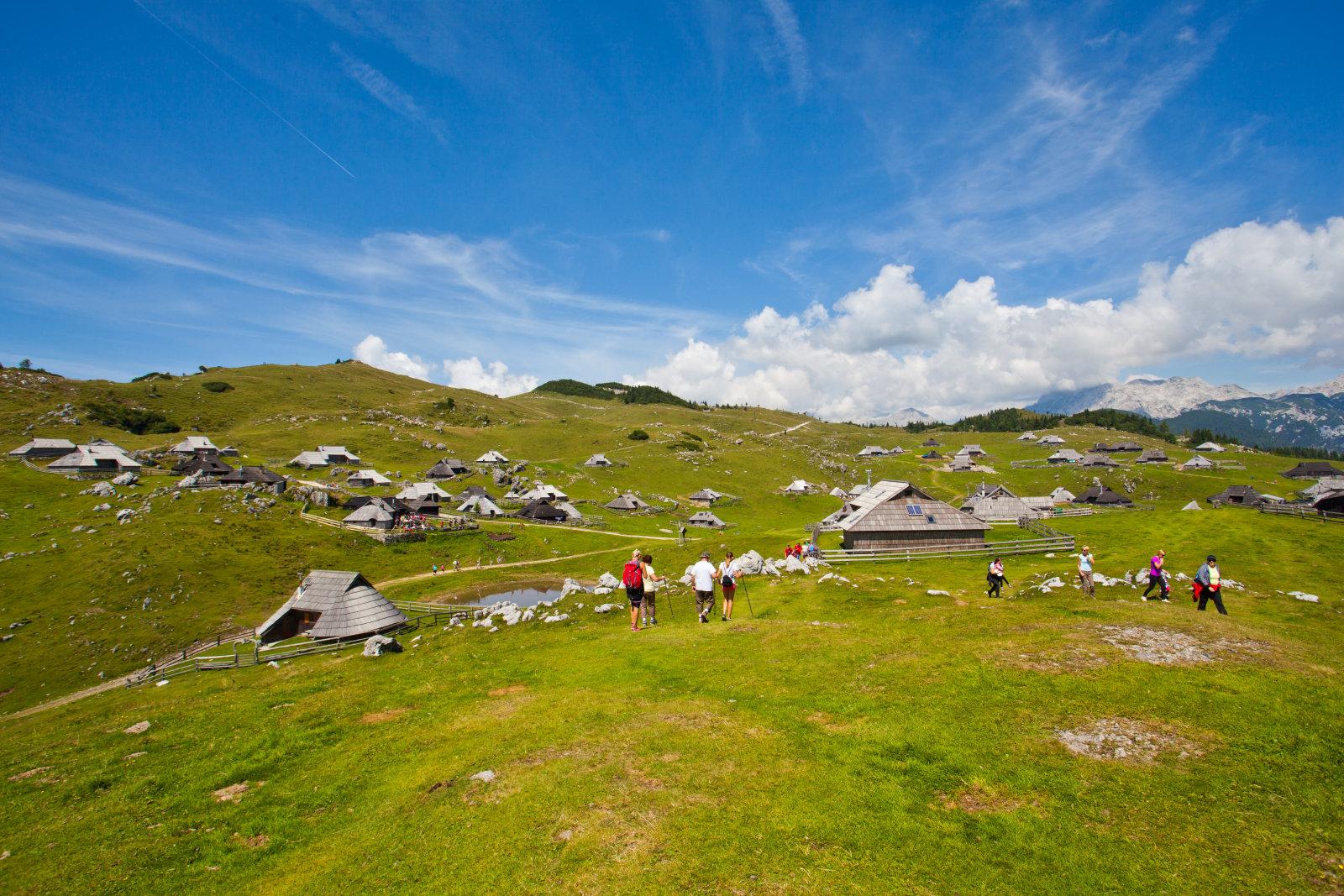 velika-planina-pasture