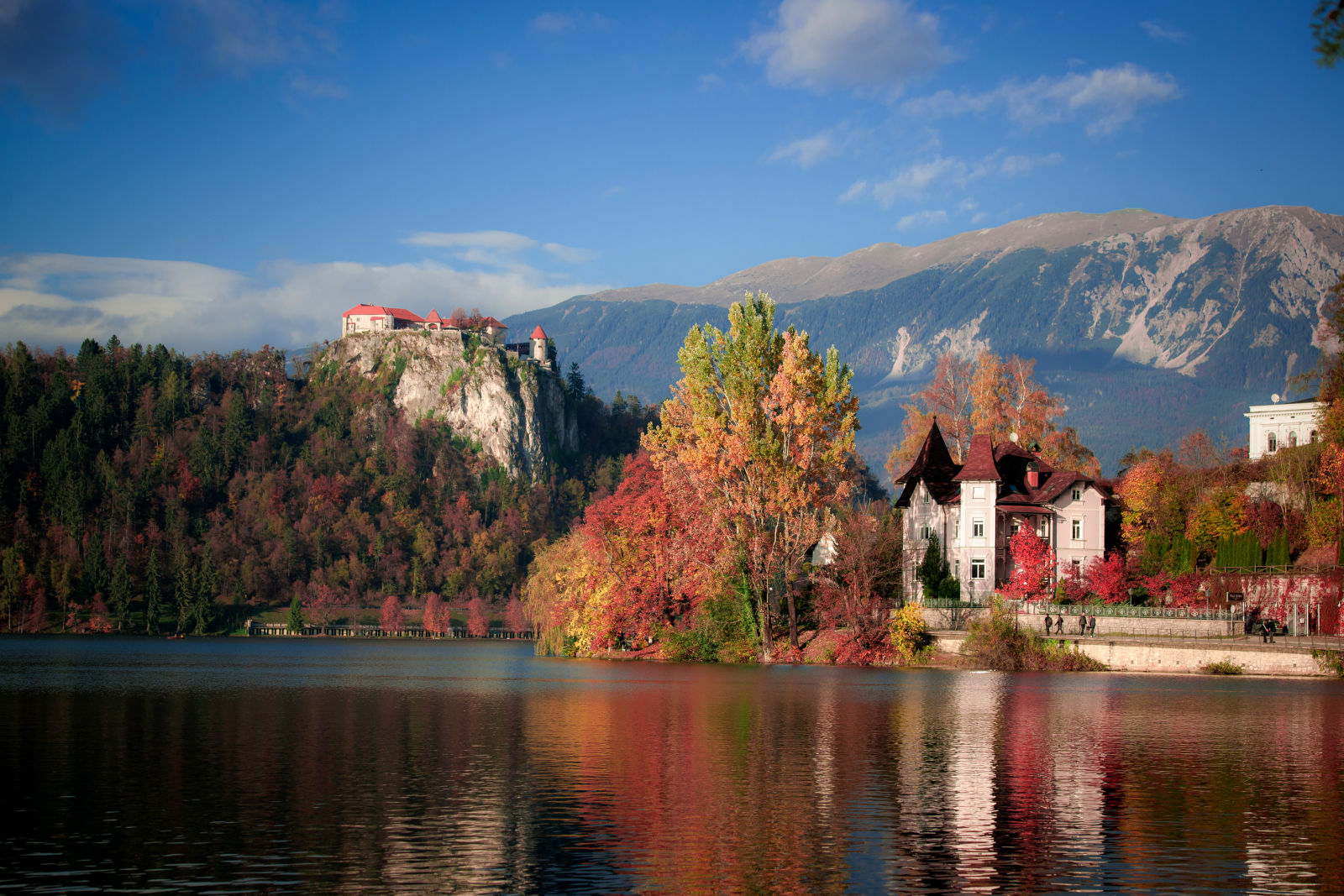 Bled Castle and Lake Bled in autumn