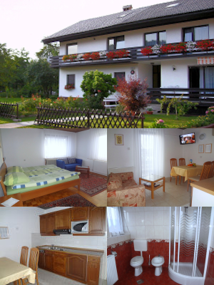 Collage of the Spacious 2 Bedroom Apartment with 2 Balconies and Castle View in Lake Bled, Slovenia